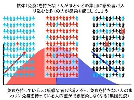 集団免疫について説明する図