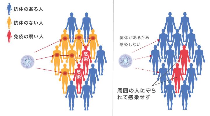 集団免疫により免疫を持たない人が保護されることを説明する図