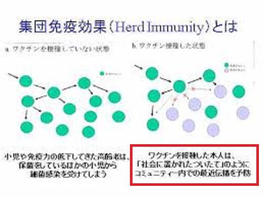 ワクチンにより集団免疫が誘導されることを示す図