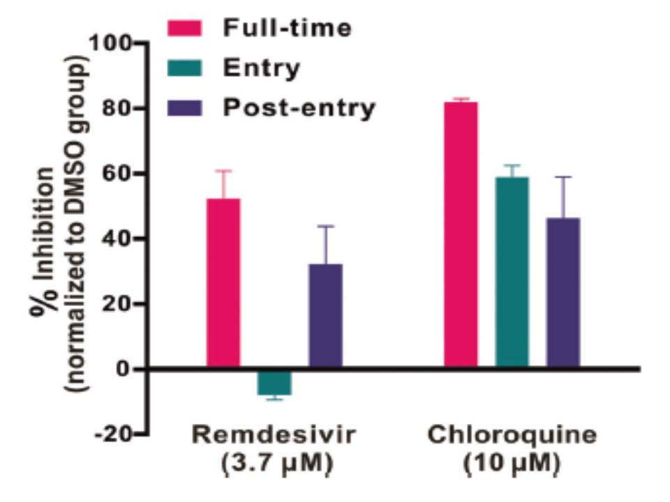 クロロキンの抗ウイルス作用を示すグラフ