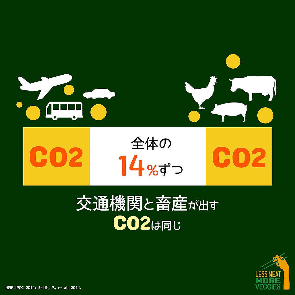 畜産業は環境問題の最も深刻な原因となることを説明する図