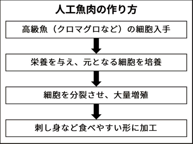 人工魚肉の製造法を示す図