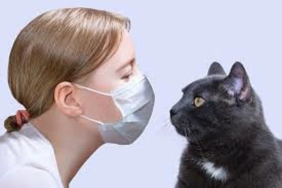 マスクをしてネコを抱っこする飼い主