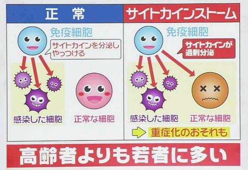 若年層に炎症性サイトカインストームが多いことを説明した図