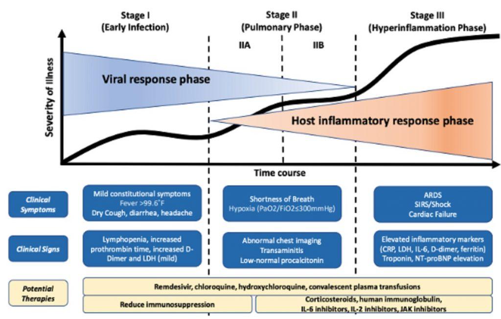 病状が進行するにつれ炎症反応が過剰になっていくことを示す図