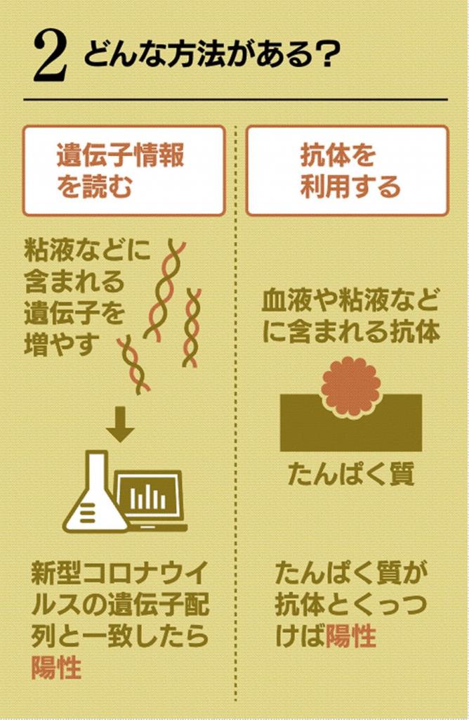 PCR検査と抗体検査について説明した図
