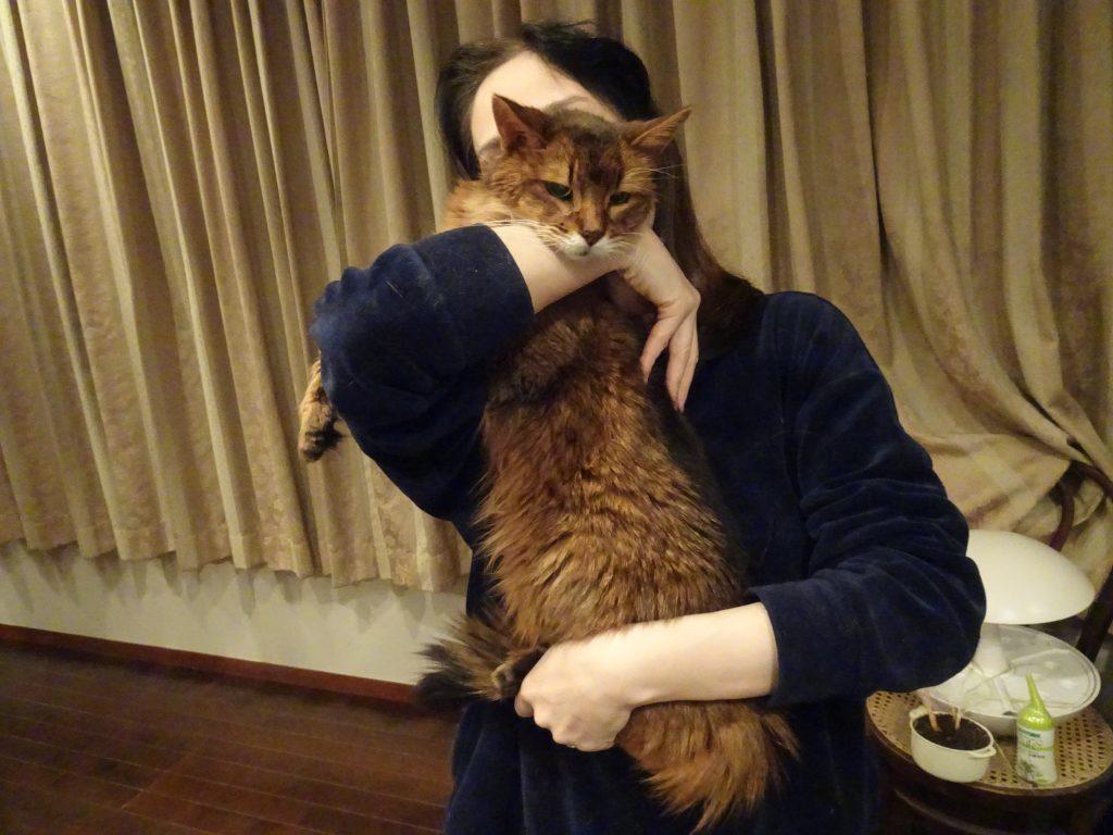 糖尿病専門医さんに立ったまま抱っこされて満足そうなローズ