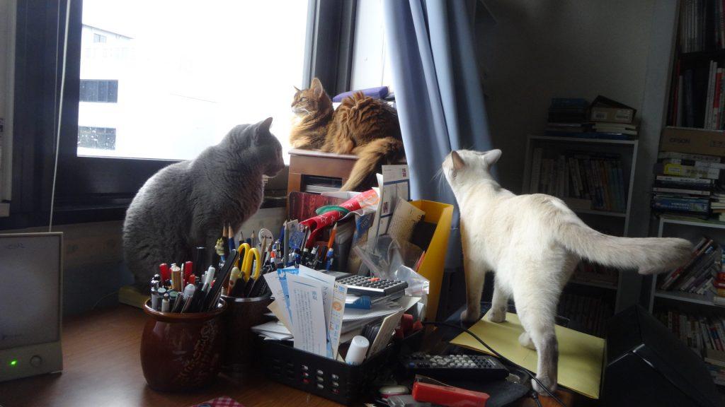 書き手の机の上での3ショット