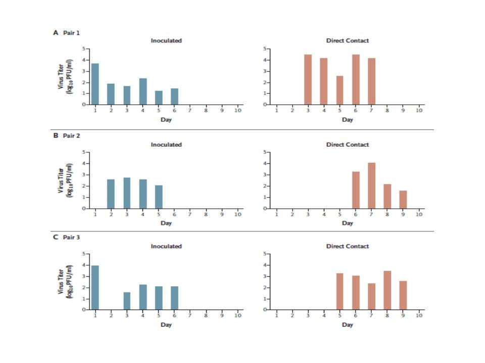 同居ネコの検体のウイルス量の経時的変化を示すグラフ