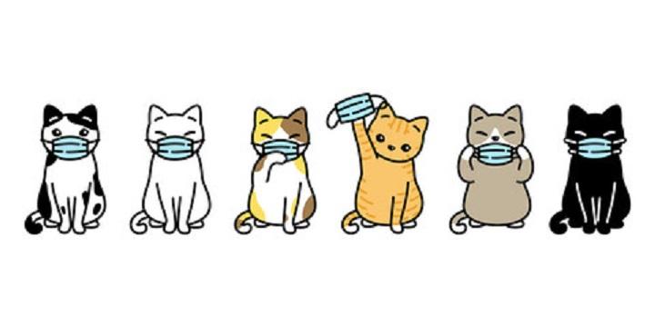 マスクをしたネコたちのイラスト