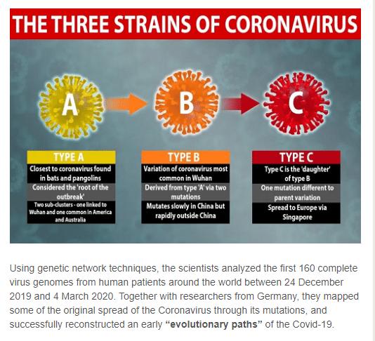 新型コロナウイルスの3つの型の世界での分布図