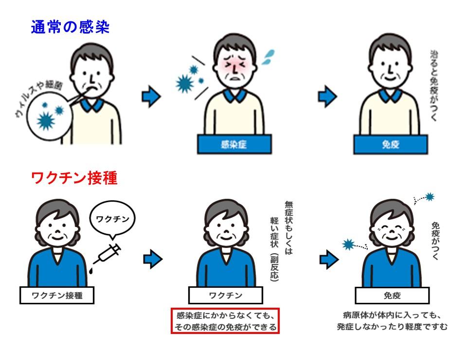 ワクチンの効能を説明する図
