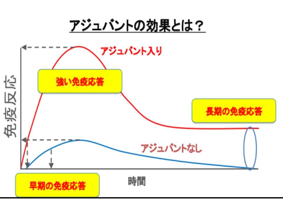 アジュバントについて説明した図