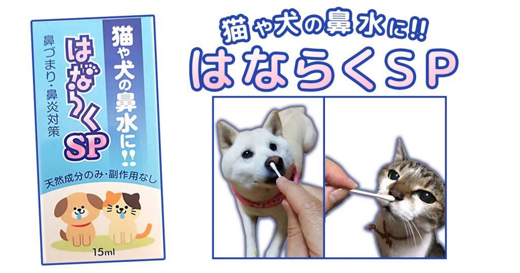 ネコ用鼻詰まりスプレーの広告
