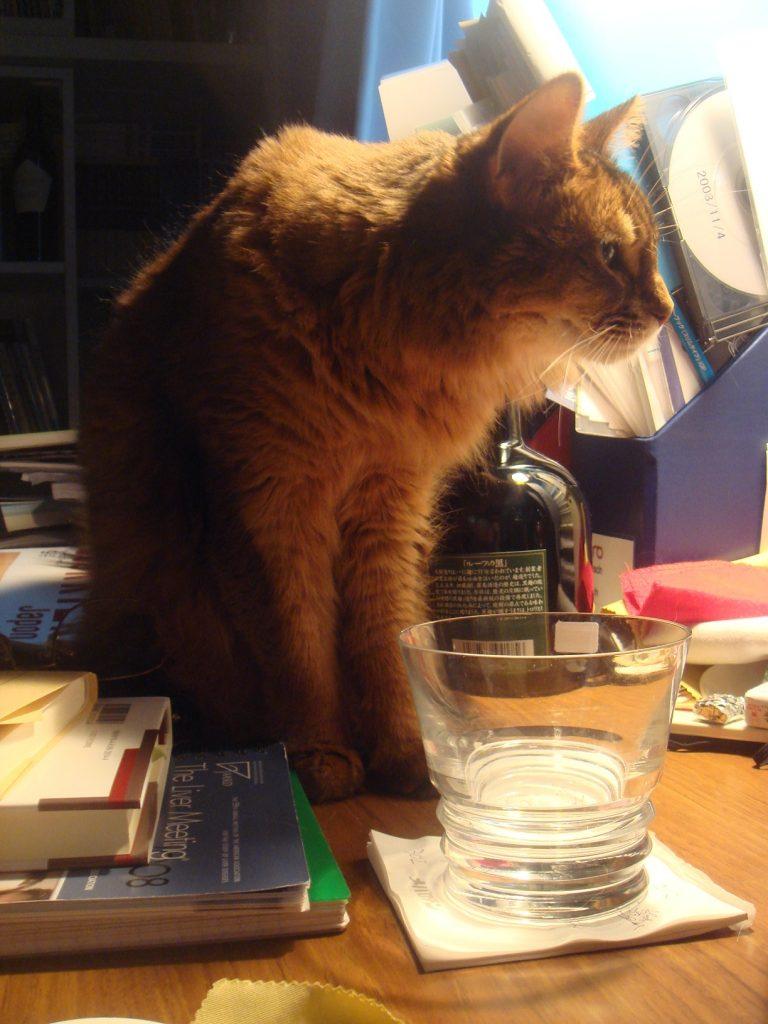 水が入ったグラスの前に座るローズ