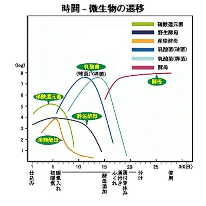 生酛造りの最中のさまざまな菌の増生・減少の経時的変化を示すグラフ