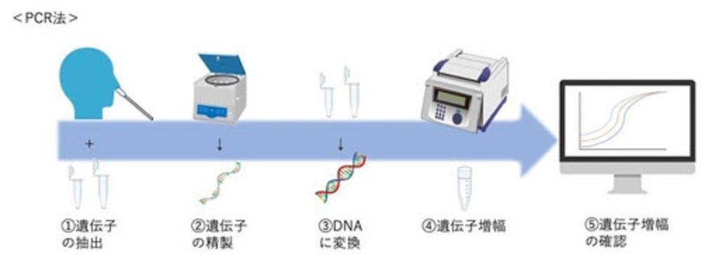 PCR法の原理を示した図