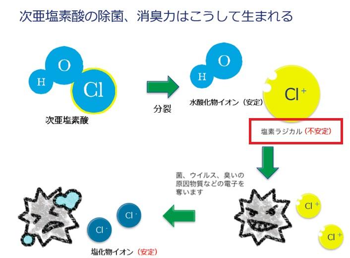 次亜塩素酸水の消毒作用を説明する図