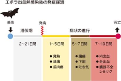 エボラ出血熱の臨床経過を示す図