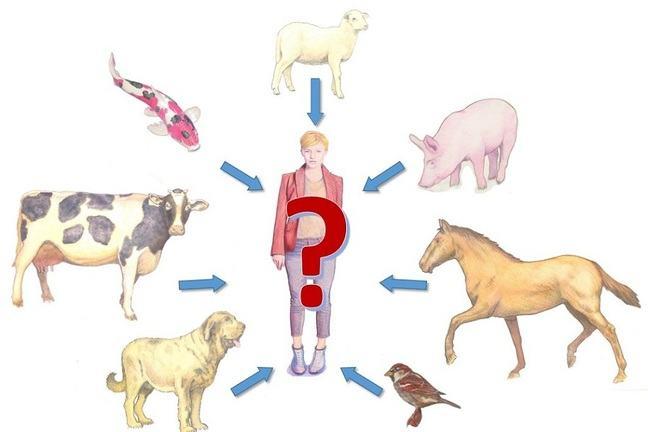 ウイルスが家畜からヒトに感染する様子