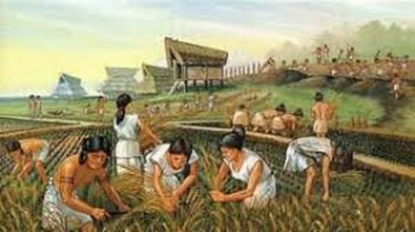 農耕生活をする人々