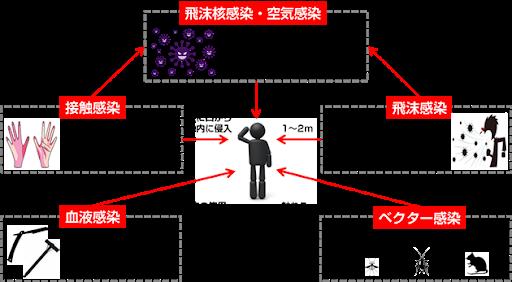 ウイルスのヒトの間での広まり方