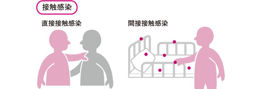 接触感染を示す図