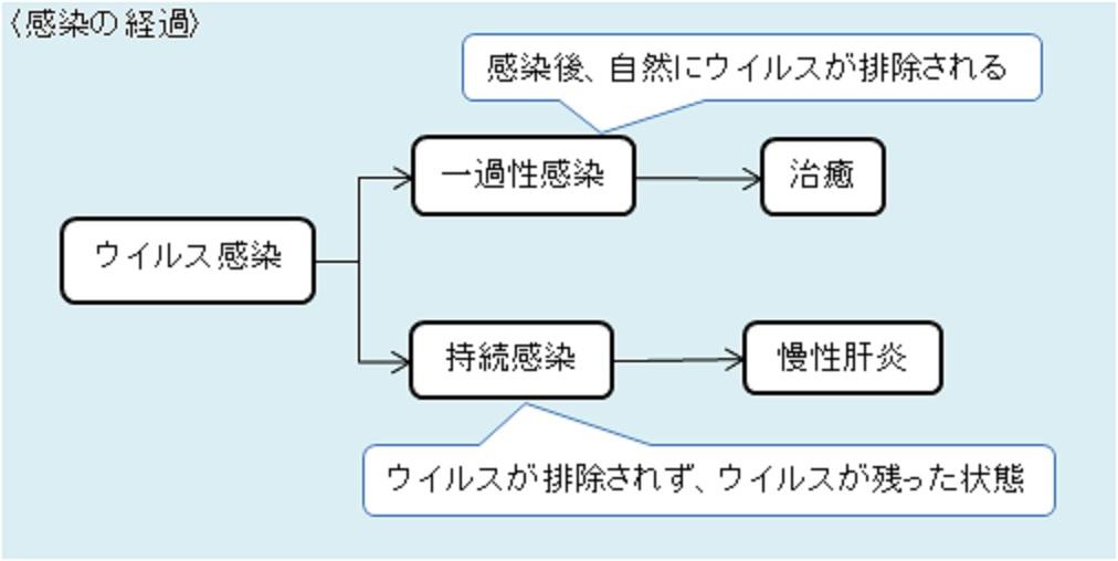 慢性感染について説明する図