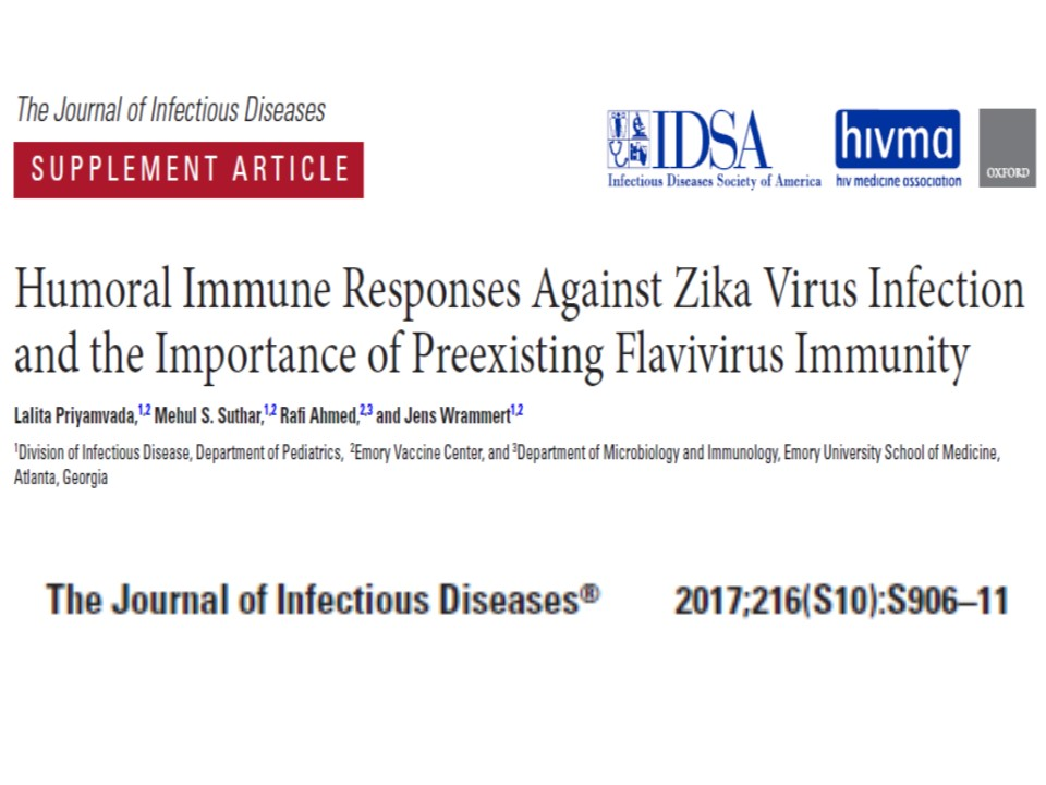 ジカ熱のワクチンでADEが起こることを説明する図