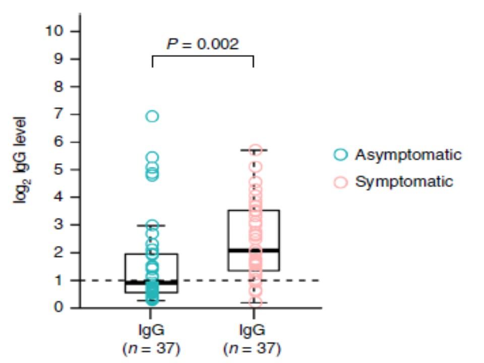 無症候性患者さんでは回復期のIgG抗体価が低いことを示すグラフ