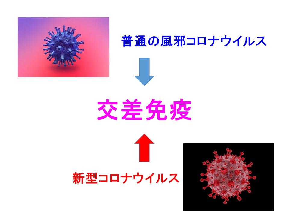 交差免疫について説明する図