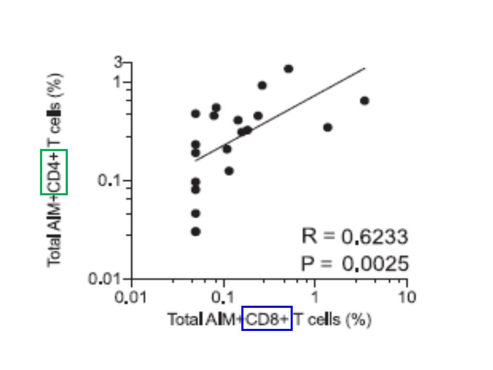 CD4+Tリンパ球 CD8+Tリンパ球が両方とも充分に存在すること示すグラフ
