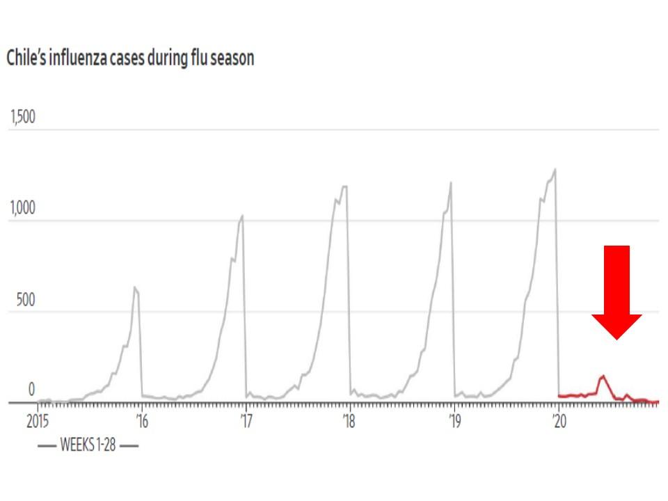 チリで今年のインフルエンザ流行が0だったことを示すグラフ