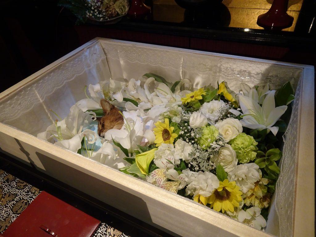 たくさんのお花に覆われたローズ