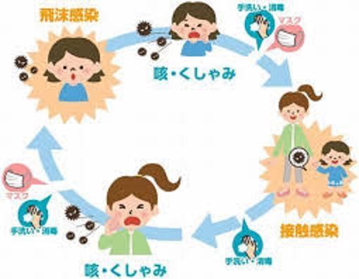飛沫感染 接触感染の重要性を示す図