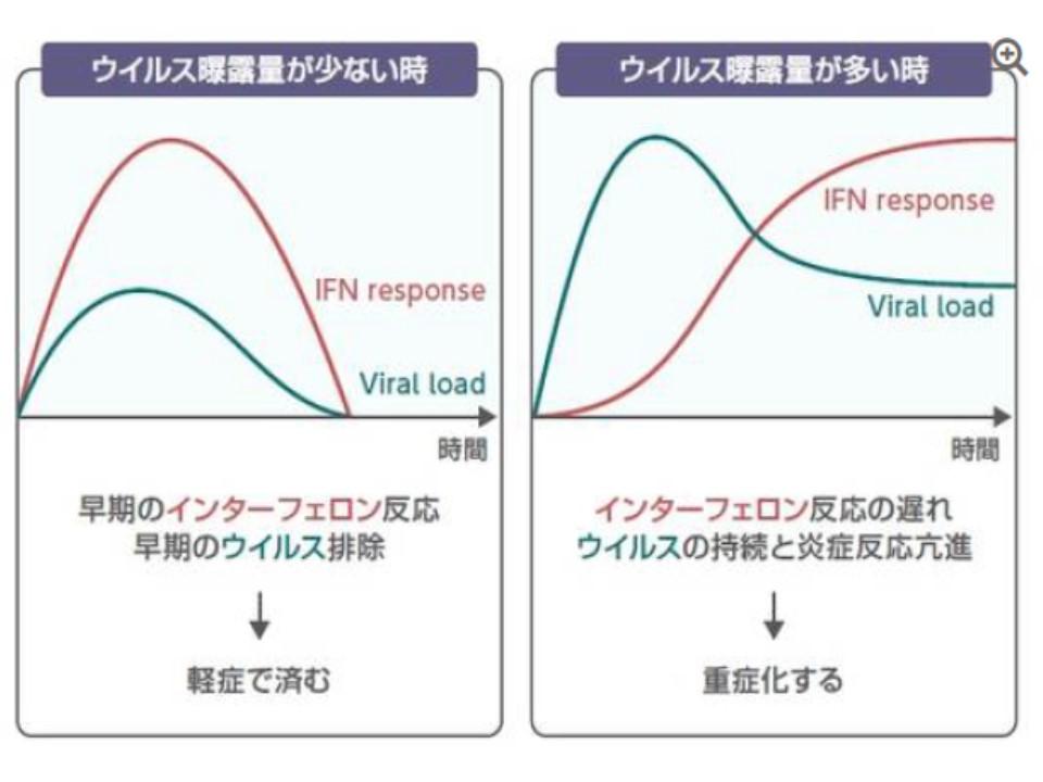 岩崎先生のグループのデータを示す図