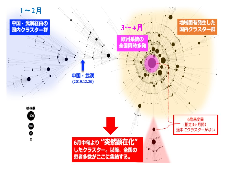 新たなウイルスが東京から全国に拡散した可能性を説明する図