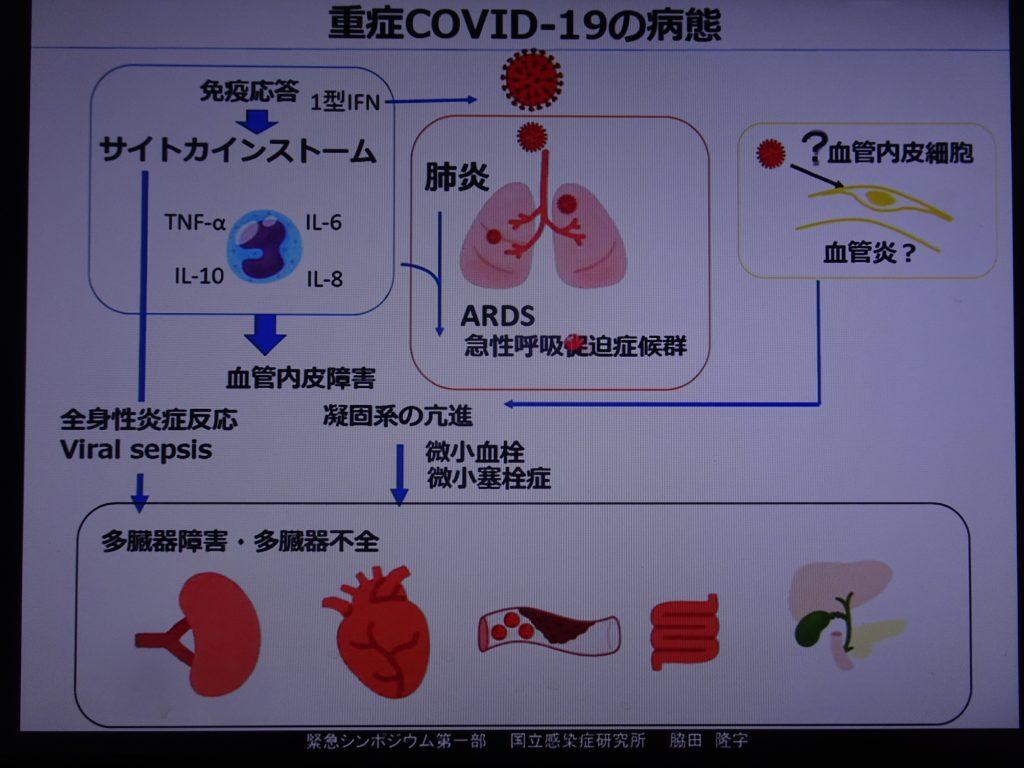 重症化したときの病態を説明する図