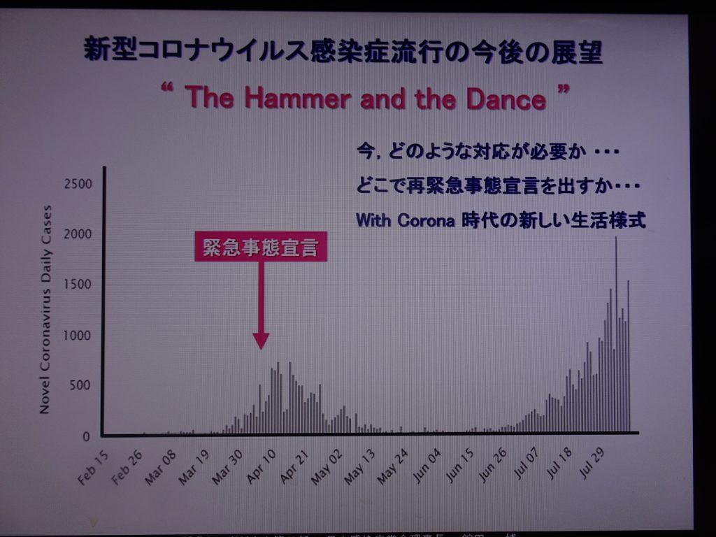 今後の展望を示した図表