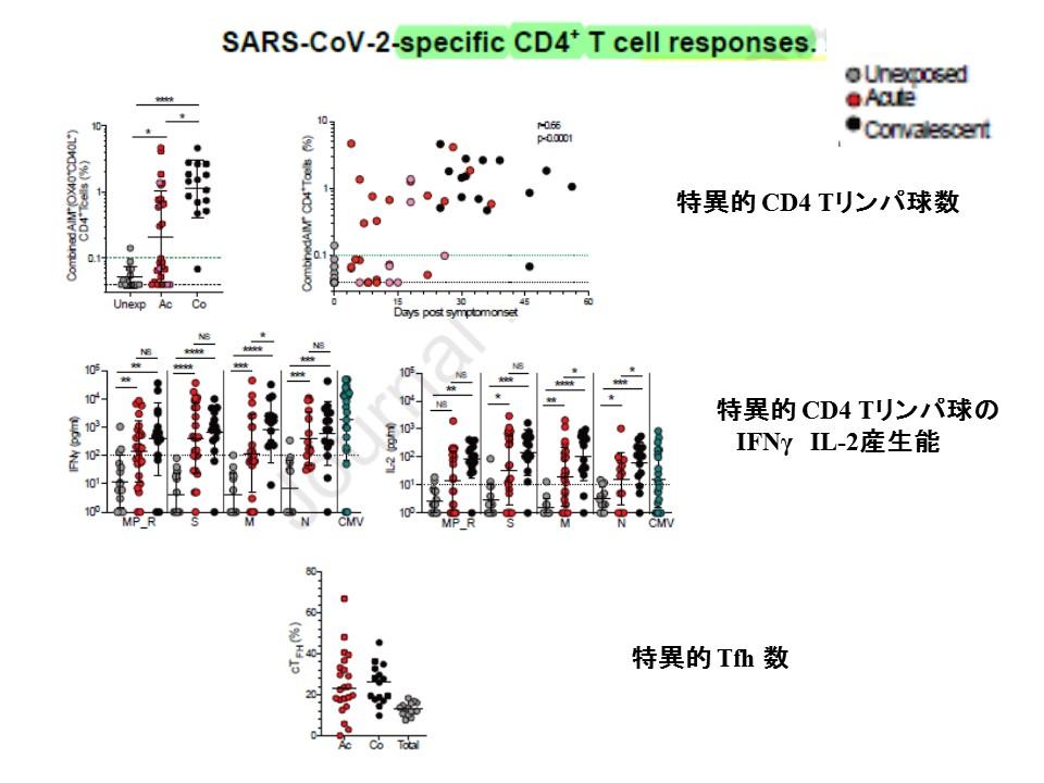 CD4・Tリンパ球に関するデータを示すグラフ