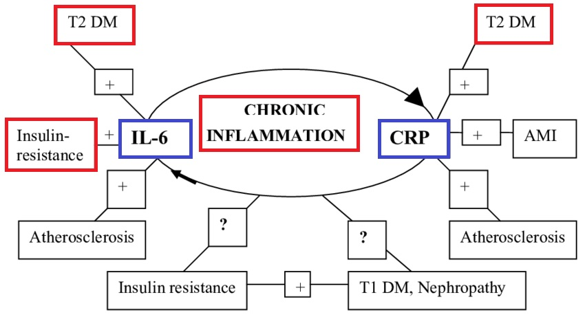 糖尿病での慢性炎症について説明する図