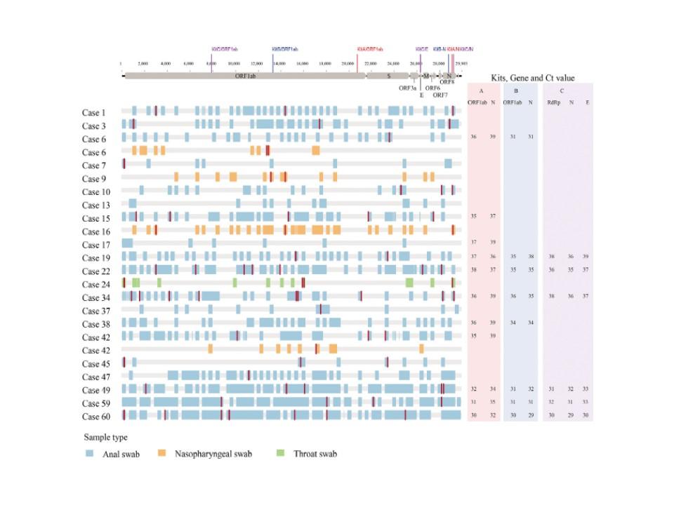 認められたゲノムのフラグメント