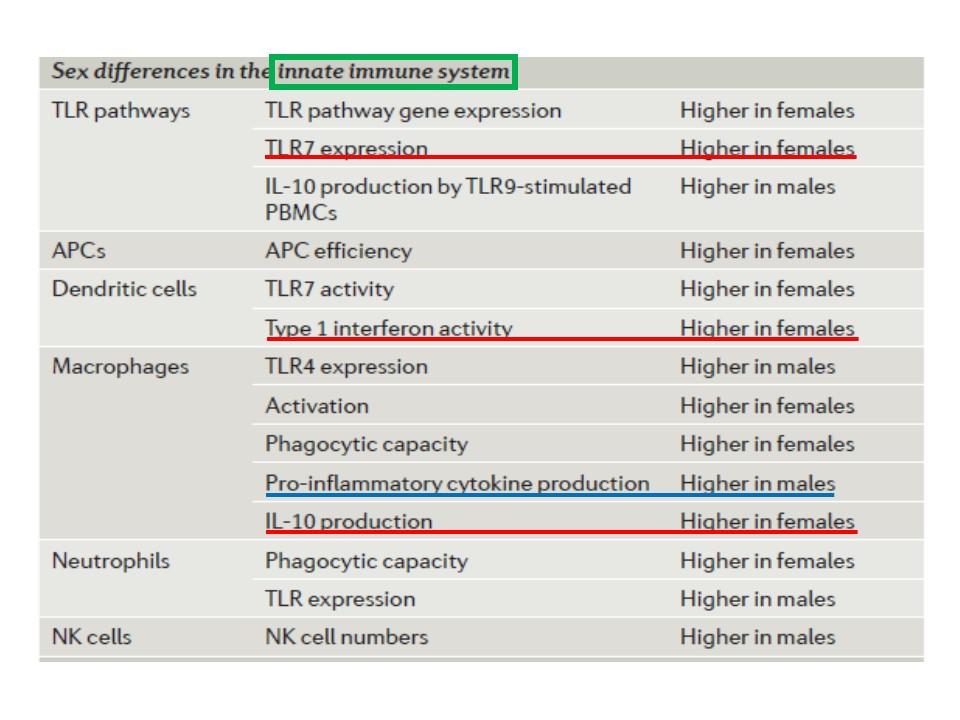 性差の自然免疫反応への影響をまとめた図表