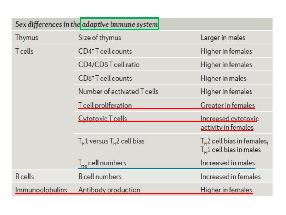 性差の獲得免疫反応への影響をまとめた図表