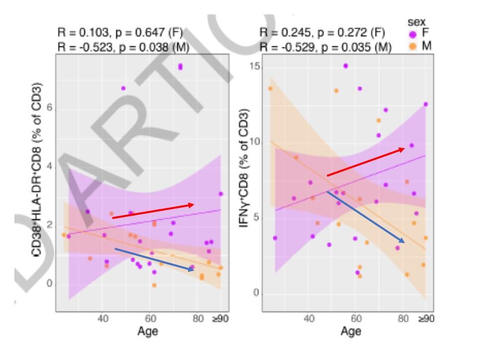 男性ではTリンパ球の低下が見られ 加齢とともに増強し 病態の悪化と関連することを示すグラフ