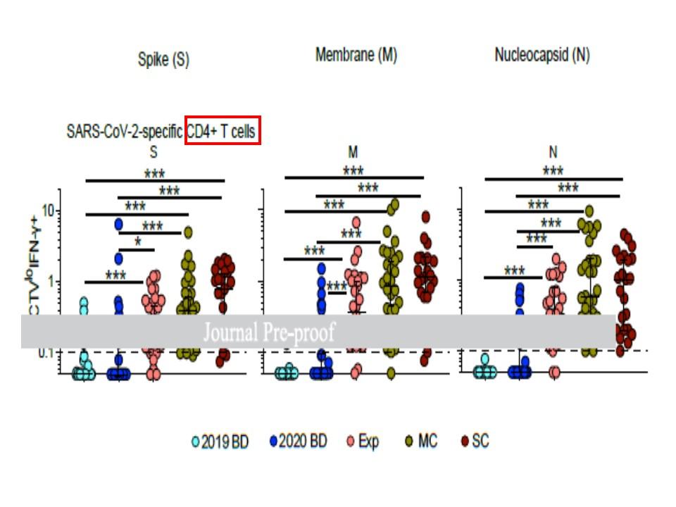 メモリー型Tリンパ球の反応性を示すグラフ