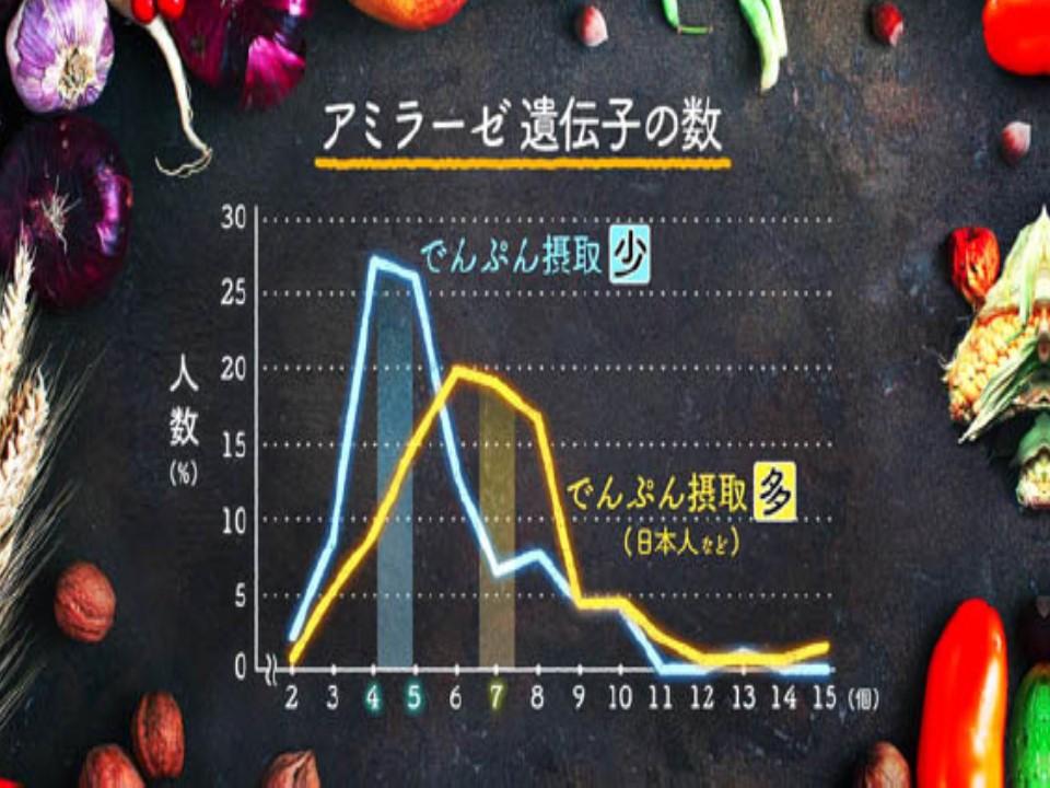 アミラーゼ遺伝子の数とでんぷん摂取量の関係を示すグラフ