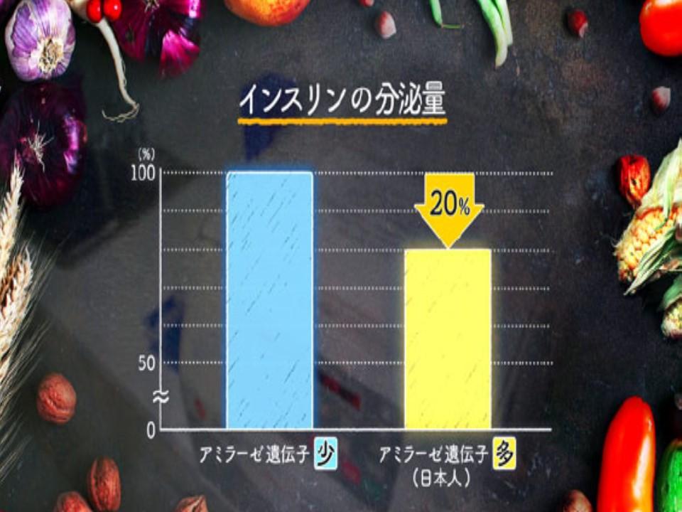 アミラーゼ遺伝子の数とインスリン分泌量の関係を示すグラフ