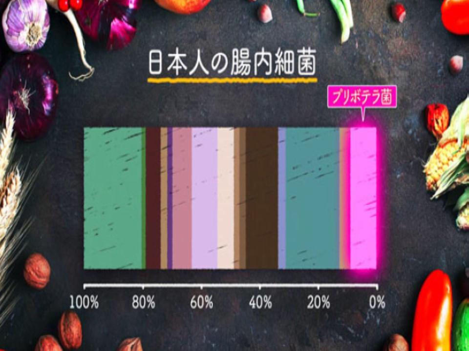 日本人の腸内細菌叢にもプリボテラ菌が存在することを示すグラフ