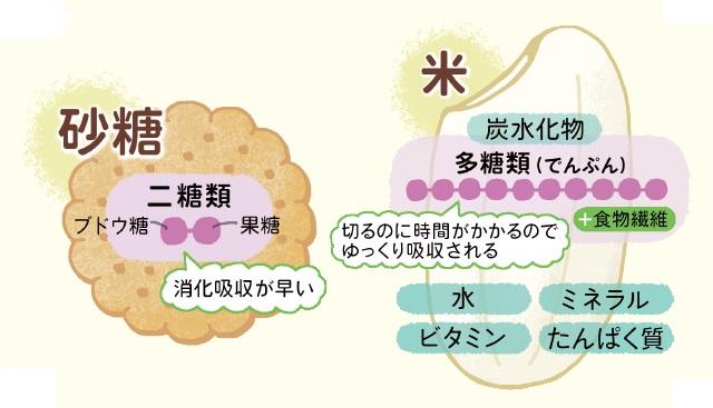 ご飯と砂糖の違いを示す図